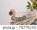 自動車税・軽自動車税の納税書 78776150
