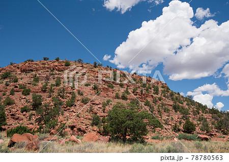 アメリカのアリゾナ州のセイリングマンの景色 78780563
