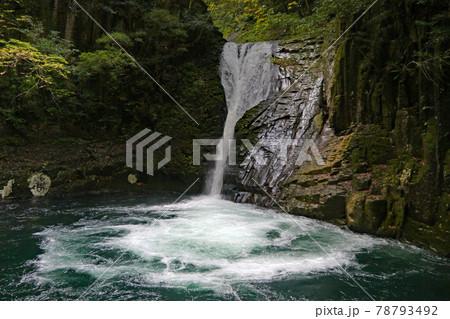 水の勢いを感じる赤目四十八滝のなかの布引滝 78793492