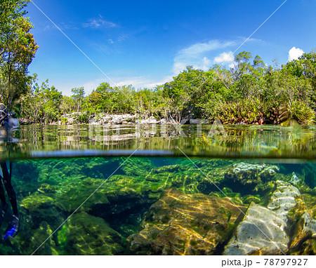 セノーテの半水面写真 (プラヤ・デル・カルメン、メキシコ) 78797927