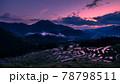 丸山千枚田の夕景 78798511