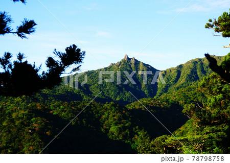 屋久島 新高塚小屋から縄文杉への登山道からみる翁岳 78798758