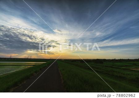 幻想的な夕暮れとサイクリングロード 78802962