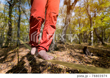 Close-up below the waist of a sporty man practicing slackline balance in autumn forest 78803974