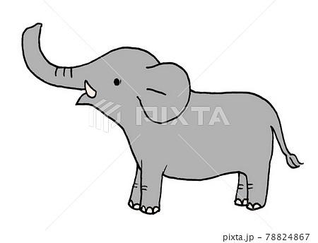 かわいい象のイラスト 78824867