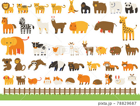 動物(ほ乳類)イラストセット(線なし) 78829687