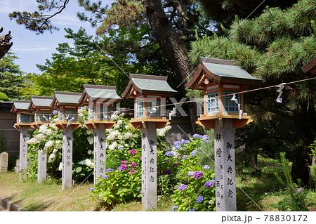 あじさい神苑で有名な兵庫県明石市の東播磨にある住吉神社にある参道 78830172