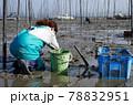 潮干狩り(有明海) 78832951