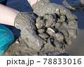 潮干狩り(有明海) 78833016