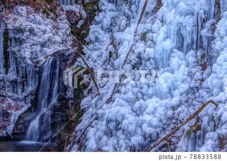 埼玉県小鹿野町の冬の風物詩である尾ノ内渓谷氷柱 78833588