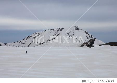 室堂の雪景色(曇り空の奥大日岳) 78837634