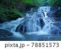 群馬県北軽井沢にある魚止めの滝 78851573