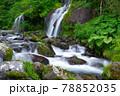 山梨県清里にある吐竜の滝 78852035