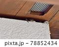 ヤモリ 家の壁 78852434