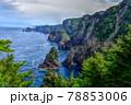 岩手県三陸海岸の絶景スポット、北山崎 78853006