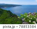 岩手県黒崎展望台から見る景色 78853384