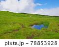 新潟県と長野県の県境にある苗場山 78853928