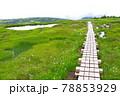 新潟県と長野県の県境にある苗場山 78853929