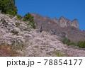群馬県下仁田町にある県立森林公園さくらの里から見る景色 78854177