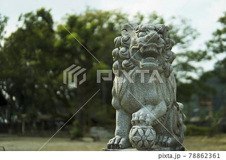 青井阿蘇神社/人吉 狛犬 78862361