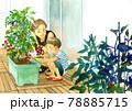 ベランダ菜園でトマトを収穫する親子 78885715