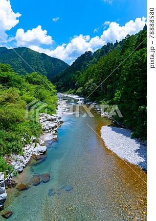 岐阜県 関市 板取 モネの池と周辺の風景 78888580