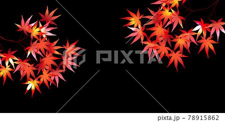 紅葉 もみじ 秋 背景 78915862