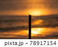 とんぼ シルエット 夕焼け 湖 78917154