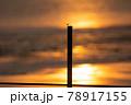 とんぼ シルエット 夕焼け 湖 78917155