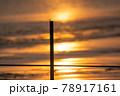 とんぼ シルエット 夕焼け 湖 78917161