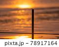 とんぼ シルエット 夕焼け 湖 78917164