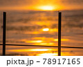 とんぼ シルエット 夕焼け 湖 78917165