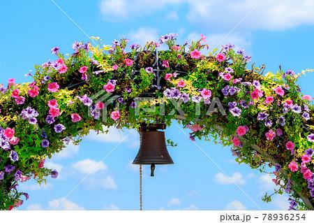 夏空に咲くペチュニアのフラワーアーチ 78936254