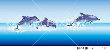 イルカ 群れ 海 イラスト dolphin  78990648