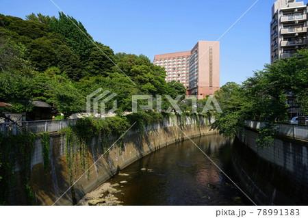 6月 新宿216ホテル椿山荘東京と神田川 78991383