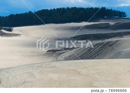 鳥取砂丘に残る足跡と砂模様 78996666