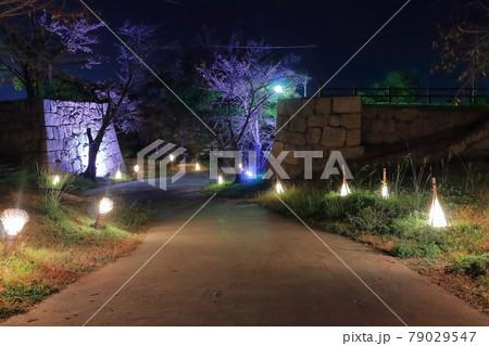 【香川県】丸亀城の夜景(山崎坂イルミネーション) 79029547
