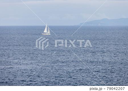 伊豆半島沖の穏やかな海を帆走する白いヨットと伊豆大島 79042207