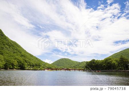 赤城山、初夏の赤城大沼と啄木鳥橋 79045738