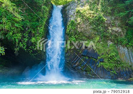 (静岡県)浄蓮の滝 79052918