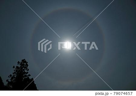 【日暈と飛行機雲】 79074657