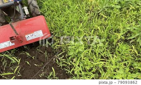 耕耘機で畑を耕しているイメージ素材 79093862