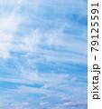 空 青空 雲 風景 背景 79125591