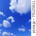 空 青空 雲 風景 背景 79125611