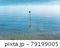 沖縄県宮古島、伊良部島の佐和田の浜・日本 79199005