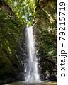 黒滝 79215719