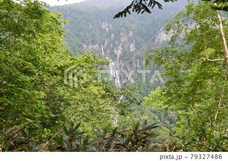 日本の滝百選に選定されている羽衣の滝の景観 79327486