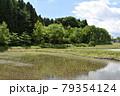 日本 群馬の水上 夏の風景 79354124