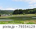 日本 群馬の水上 夏の風景 79354129