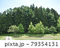 日本 群馬の水上 夏の風景 79354131